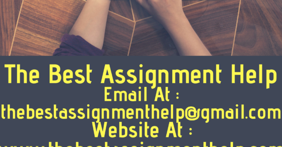 scu assignment help